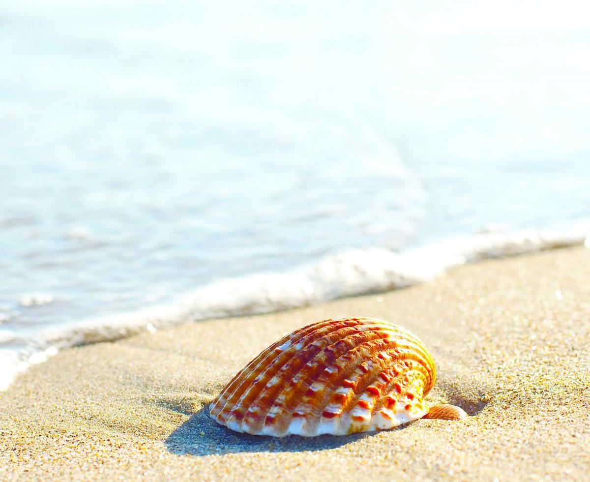 Reportagem nas Praias do Algarve